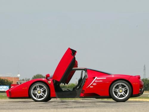 Ferrari-Enzo-047.jpg